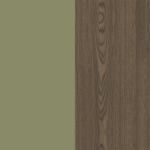 Dark Oak/Spring Green